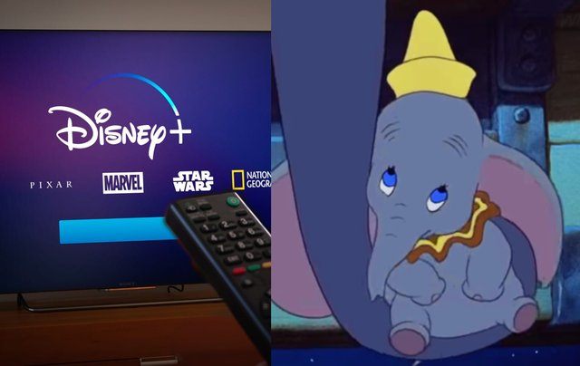 Dumbo, Peter Pan and The Aristocats have been removed from the children's section of the streaming service (Photo: Shutterstock/Disney)
