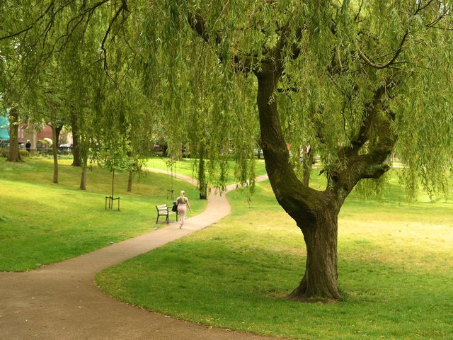 Proportion of adults in Preston who do not take a short weekly stroll is higher than the average across England