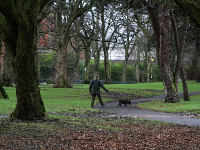 Do you know the rules about where dogs need to be kept on leads around Preston?