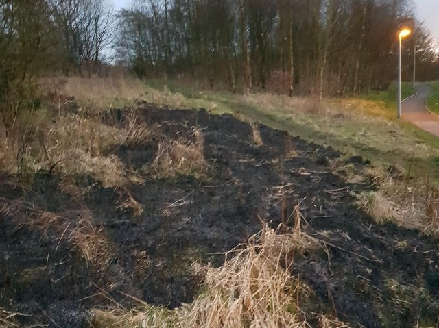 Parts of Grange Park in Preston have been left scorched after reckless youths started fires yesterday evening (Sunday, March 21).