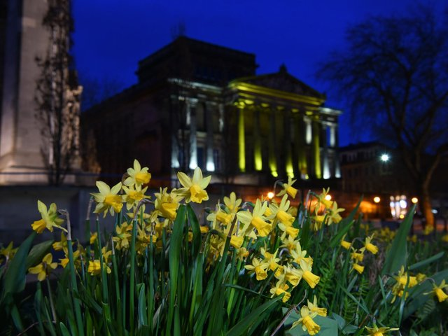 Spring of hope: Preston bathed in yellow tonight
