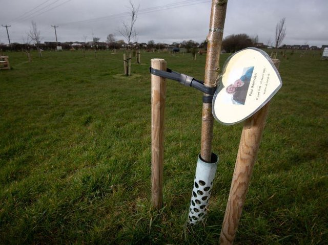 1,000 trees have now been planted at the 65-acre site in Wrea Green. Here, a tree is dedicated to Paul Ramsden