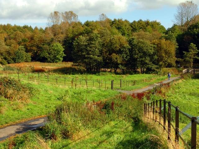 Cuerden Valley Park, near Bamber Bridge