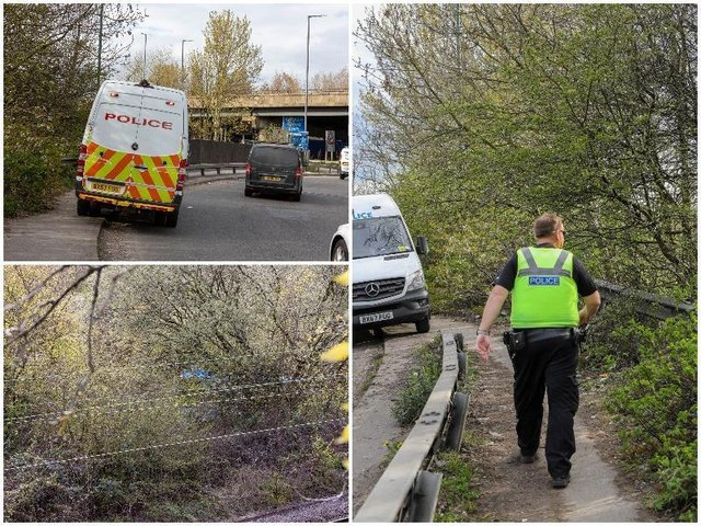 Police have launched an investigation following the grisly discovery of human remains in woodland next to one of Britain's busiest motorway junctions.