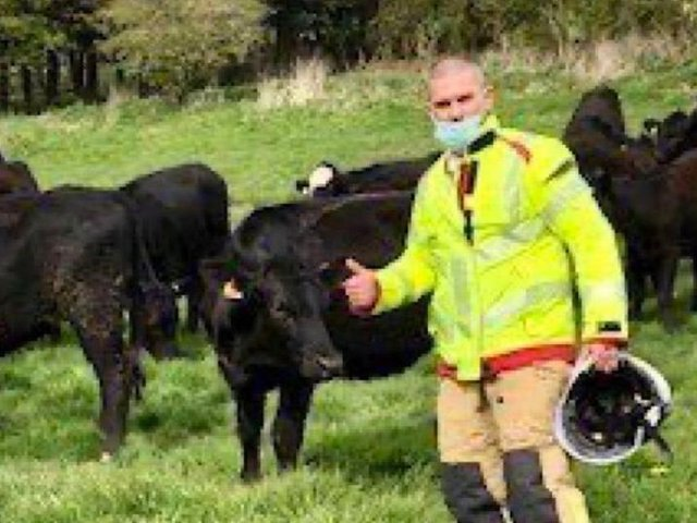 Firefighters rescued a cow from the Lancaster Canal on Tuesday afternoon (April 20)