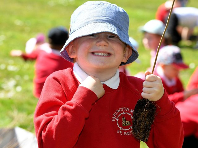 A Farington Moss pupil holds one of the saplings to plant on the school field, photo: Neil Cross.