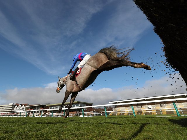Haydock Park stages a competitive eight-race card on Saturday which sees a mix of both Flat and Jump racing
