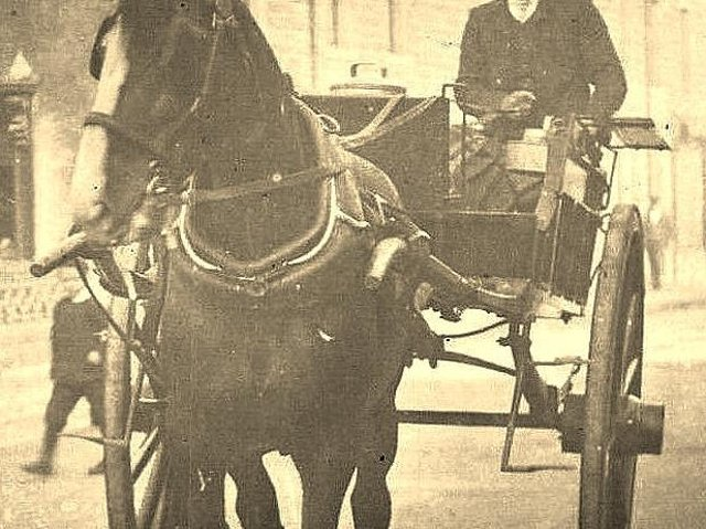 Farmers and their horse and cart were a common sight