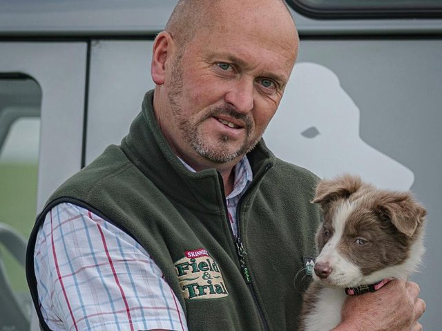 The little sheepdog broke the record for most expensive untrained sheepdog bought at auction.Dave Swinburn Photography.
