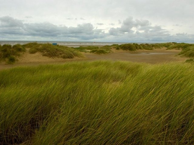Mr Hedley was fined after a walk on Ainsdale Beach