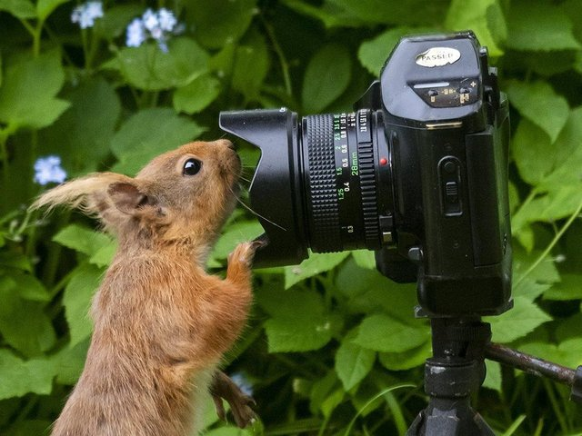 Have you taken a great photo?